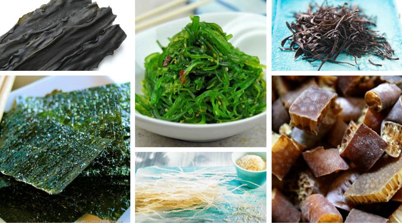 algas-cocina-ortomolecular