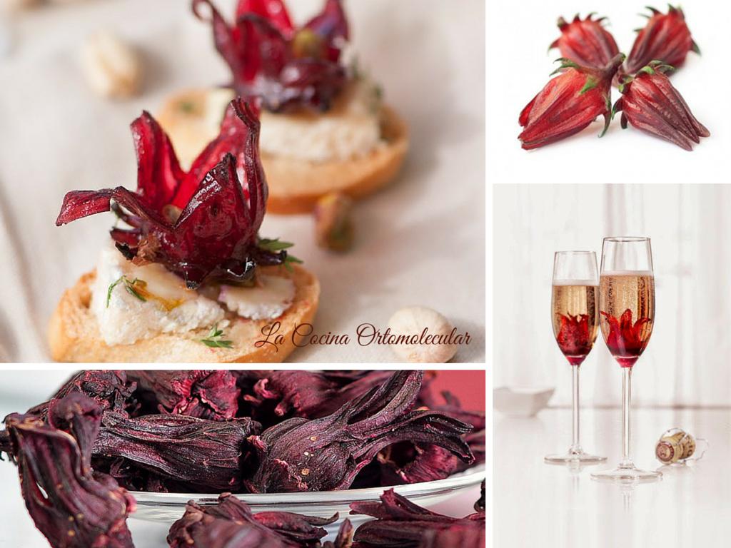Flor de hibiscus-cocina gourmet-La Cocina Ortomolecular