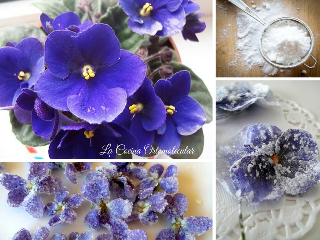 Flores cristalizadas-violetas -La Cocina Ortomolecular