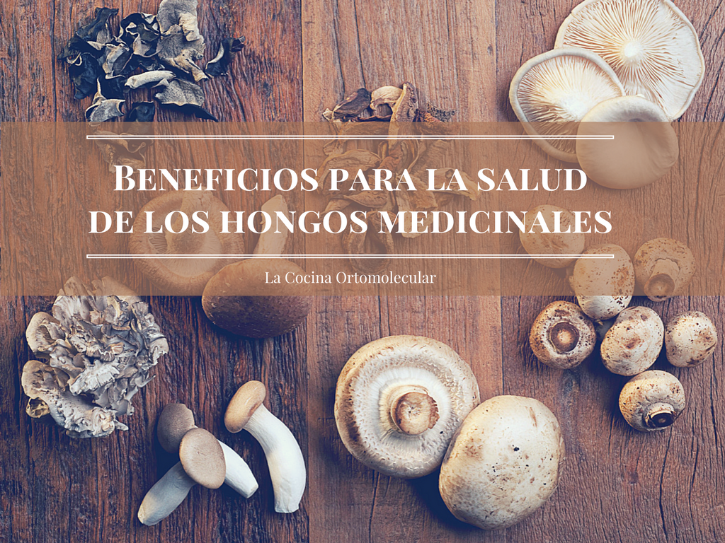 beneficios-de-los-hongos-medicinales-la-cocina-ortomolecular
