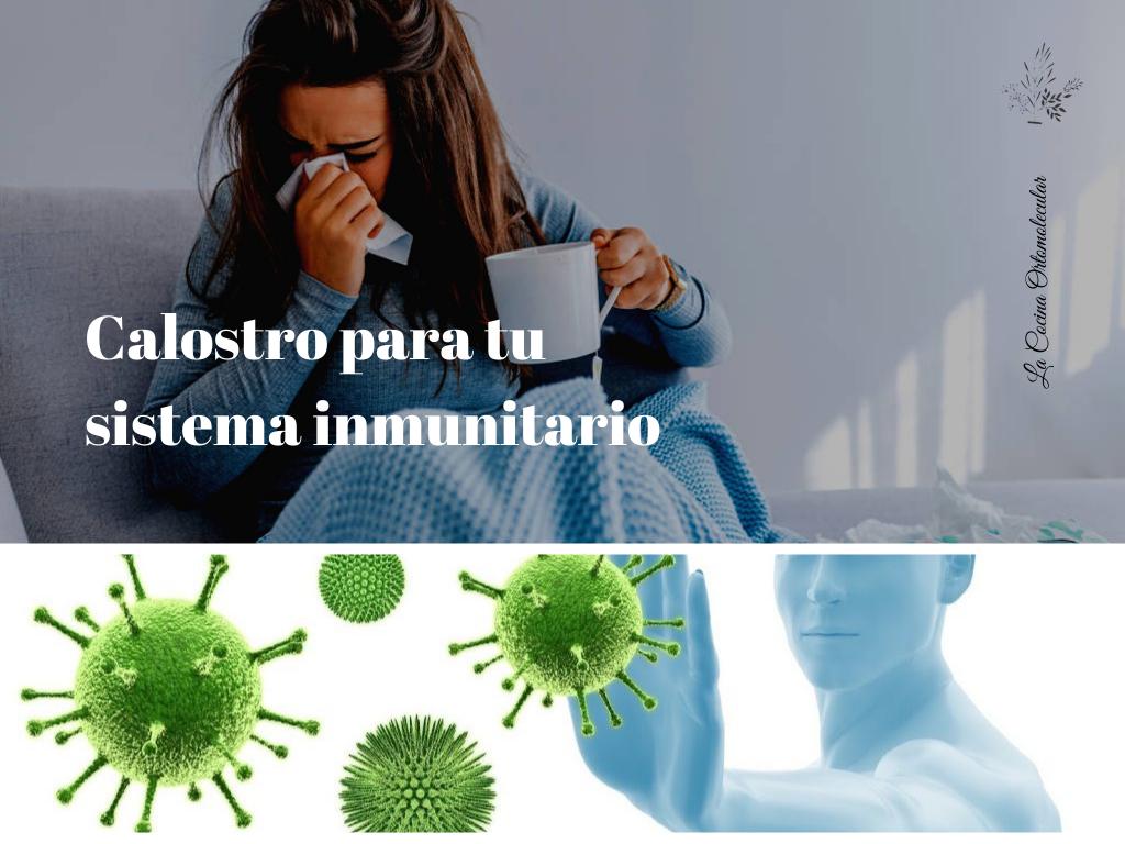 Calostro para tu sistema inmunitario- La Cocina Ortomolecular